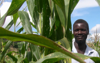High-protein crops improve family nutrition USAID